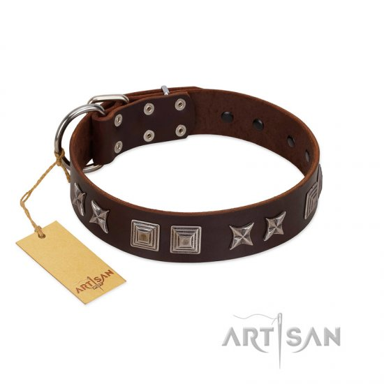 """Needle Stories"" Modern FDT Artisan Brown Leather Great Dane Collar with Square Engraved Plates and Four-Point Stars"
