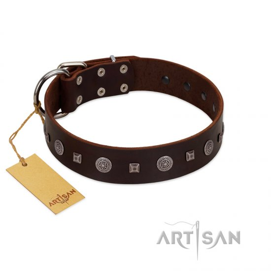 """Pure Sensation"" Exclusive FDT Artisan Brown Leather Great Dane Collar with Fancy Brooches and Studs"