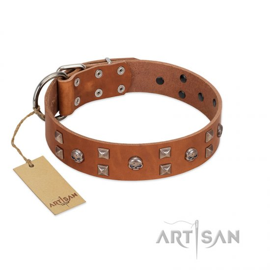 """Enchanted Skulls"" FDT Artisan Tan Leather Great Dane Collar with Chrome Plated Skulls"