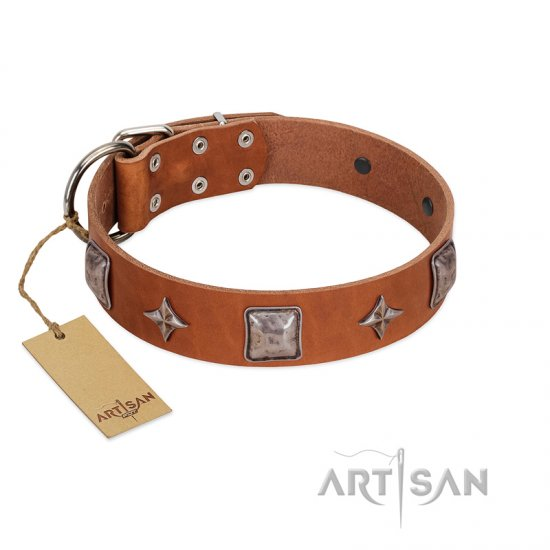 """Lucky Star"" FDT Artisan Tan Leather Great Dane Collar with Silver-Like Embellishments"