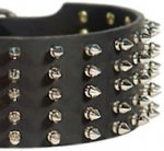 Walking in Style and Grace - Extra Wide Spiked Leather Great Dane Collar