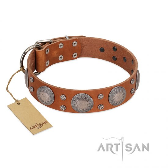 """Far Star"" FDT Artisan Tan Leather Great Dane Collar with Engraved Studs"