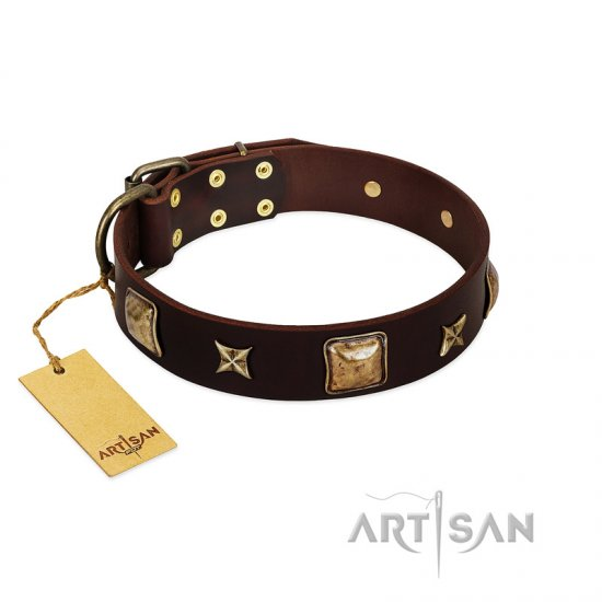 """Choco Dreams"" FDT Artisan Brown Leather Great Dane Collar with Squares and Stars"
