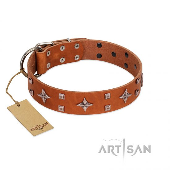"""Tawny Beauty"" FDT Artisan Tan Leather Great Dane Collar Adorned with Stars and Tiny Squares"