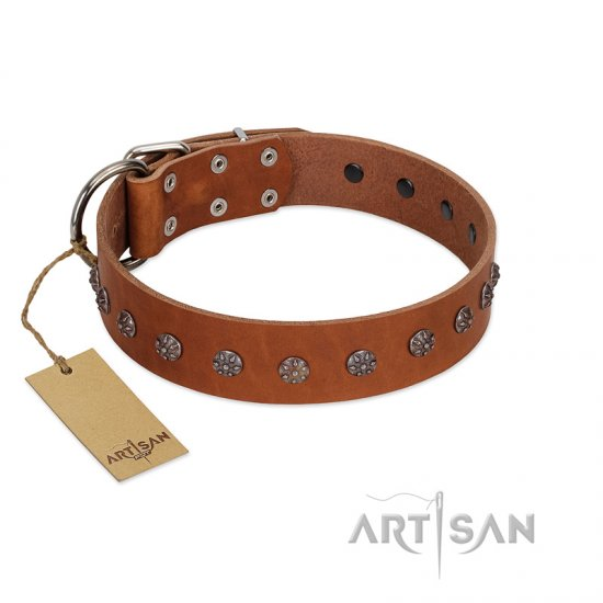 """Daintiness"" Designer Handmade FDT Artisan Tan Leather Great Dane Collar with Silver-Like Adornments"
