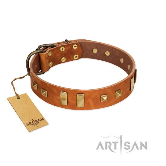 """Sand of Time"" FDT Artisan Tan Leather Great Dane Collar with Old Bronze-like Studs and Plates"