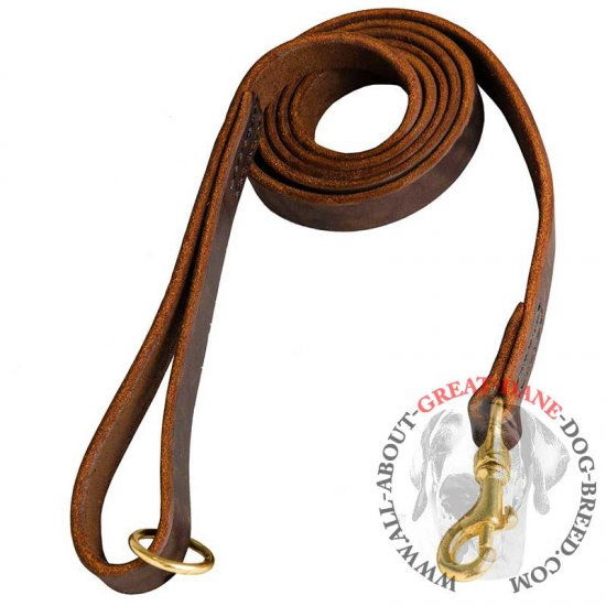 Long 6 Ft Natural Leather Great Dane Leash