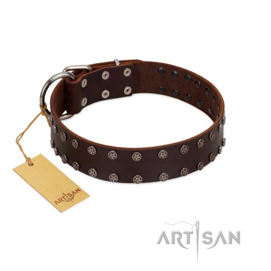 """Star Party"" Handmade FDT Artisan Brown Leather Great Dane Collar with Silver-Like Studs"