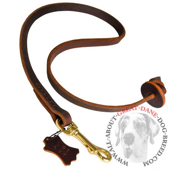 Pocket Leather Leash for Easy Great Dane Control