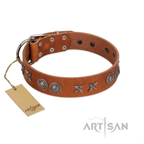 """Splendid Armor"" Premium Quality FDT Artisan Tan Designer Great Dane Collar with Shields and Stars"