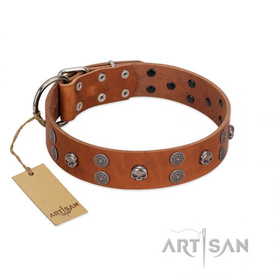 """Road Rider"" FDT Artisan Tan Leather Great Dane Collar with Old Silver-like Skulls and Medallions"