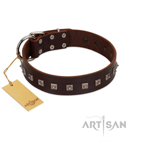 """Kingly Grace"" FDT Artisan Brown Leather Great Dane Collar with Silver-like Dotted Studs"