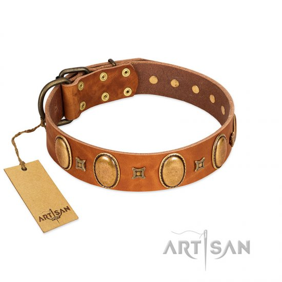 """Glossy Autumn"" Designer Handmade FDT Artisan Tan Leather Great Dane Collar with Ovals and Studs"