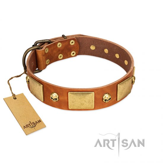 """Mutt The Daredevil"" FDT Artisan Tan Leather Great Dane Collar with Old Bronze-like Skulls and Plates"