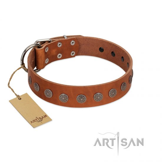 """Lucky Star"" Handmade FDT Artisan Designer Tan Leather Great Dane Collar with Round Plates"