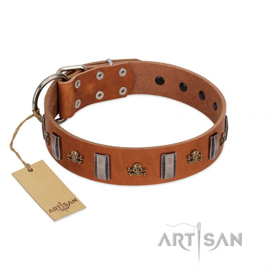 """Golden Crossbones"" Handmade FDT Artisan Tan Leather Great Dane Collar with Plates and Skulls"