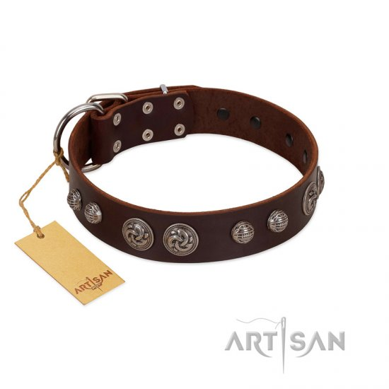 """Choco Brownie"" FDT Artisan Brown Leather Great Dane Collar Adorned with Silver-Like Conchos"