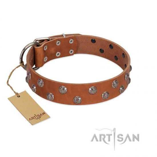 """Waltz of the Flowers"" Handmade FDT Artisan Tan Leather Great Dane Collar with Chrome-plated Engraved Studs"