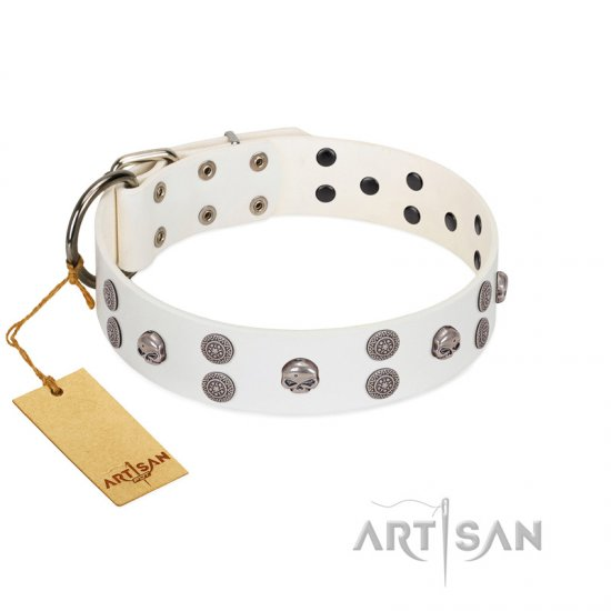 """Edgy Look"" FDT Artisan White Leather Great Dane Collar with Silver-like Skulls"