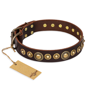 'Ancient Warrior' Great Dane Brown Leather Dog Collar