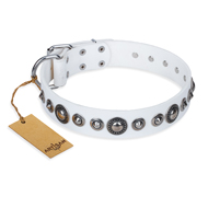'Ice Age' FDT Artisan White Studded Leather Great Dane Collar