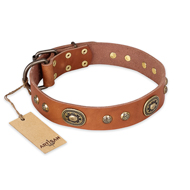 'Stunning Dress' Wide FDT Artisan Tan Leather Collar with Bronze-like Decor for Great Dane