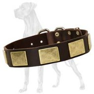Handcrafted Leather Collar With Vintage Massive Plates for Great Dane