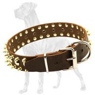 Spiked and Studded Leather Collar for Great Dane