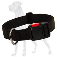 Daily Walking Nylon Collar for Great Dane