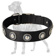 Reliable Nylon Collar with Silver Conchos for Great Dane