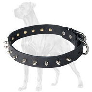 Super Leather Great Dane Collar Decorated With Spikes