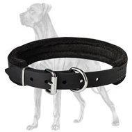 Padded Leather Great Dane Collar with Thick Felt