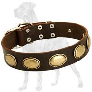 Perfect Vintage Leather Collar with Oval Plates for Great Dane