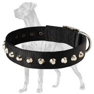 Exclusive Nylon Collar with Pyramids for Great Dane