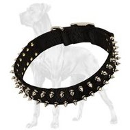 Reliable Black Nylon Spiked Collar for Great Dane