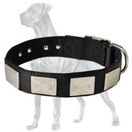 Nylon Collar With Vintage Plates for Great Dane