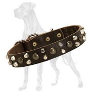 Custom Great Dane Studded Leather Collar | Nickel Plated Pyramids