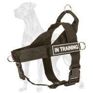 SAR Nylon Harness for Great Dane