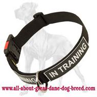 Great Dane All Weather Nylon Collar | Quick Release Buckle