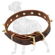 Great Dane Spiked Leather Collar | Classy Design