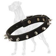 Great Dane Spiked Leather Collar | Nickel Plated Decoration