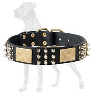 Great Dane Studded&Spiked Leather Collar | Vintage Plates