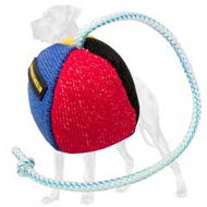 35% OFF - LIMITED OFFER! Colored Training Great Dane Toy
