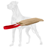 Compact Jute Great Dane Bite Tug with One Handle
