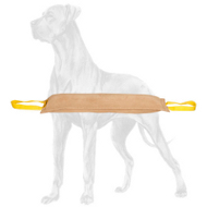 Tear Resistant Leather Bite Tug for Great Dane Advanced Training