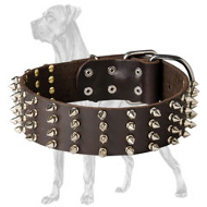 2 inch wide Leather Spiked Dog Collar for Great Dane