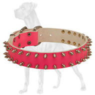 Tender Pink Leather Collar with Spikes for Female Great Dane