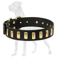 Deluxe Great Dane Collar with Brass Plates