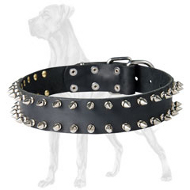 Double Row Spiked Collar for Great Dane