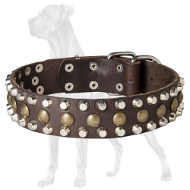 Leather Dog Collar with Studs and Pyramids for Great Dane